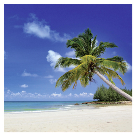 OBRAZ SKLENĚNÝ, pláž & moře cm - vícebarevná