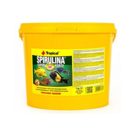 Tropical Super Spirulina Forte 36 % - 5 l