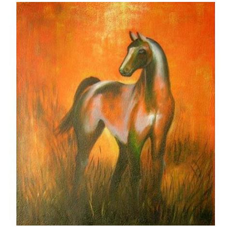 Obraz - Kůň v červánkách FOR LIVING