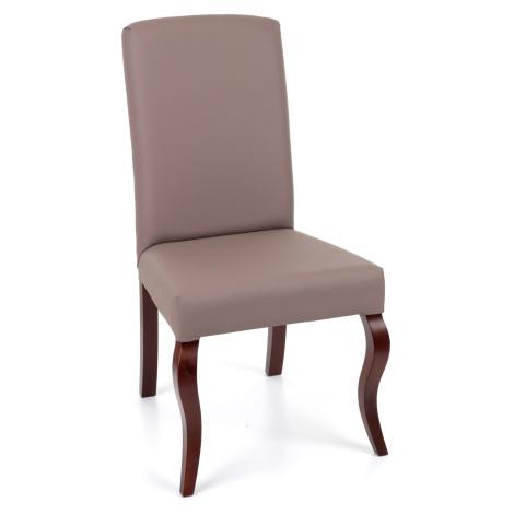 Jídelní židle Snap