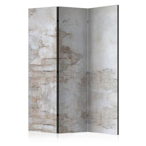 Paraván Stony Story Dekorhome 225x172 cm (5-dílný) Artgeist