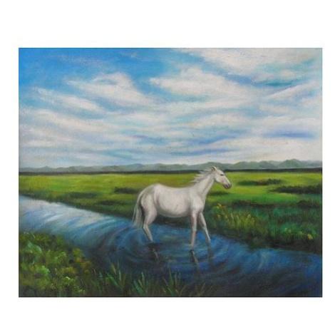 Obraz - Kůň na louce FOR LIVING