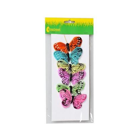 EverGreen Motýl x 6 ks, 8 x 5 cm, barva různobarevná