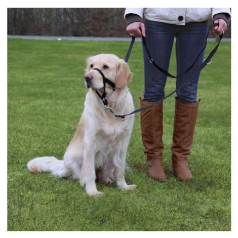 Dog  TOP TRAINER (trixie) - M