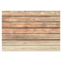 Velkoformátová tapeta Artgeist Old Pine, 400 x 280 cm