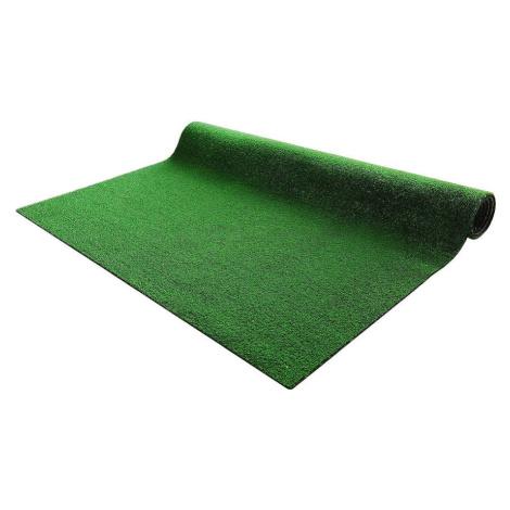 Travní koberec Wimbledon 133CM X 200CM BAUMAX